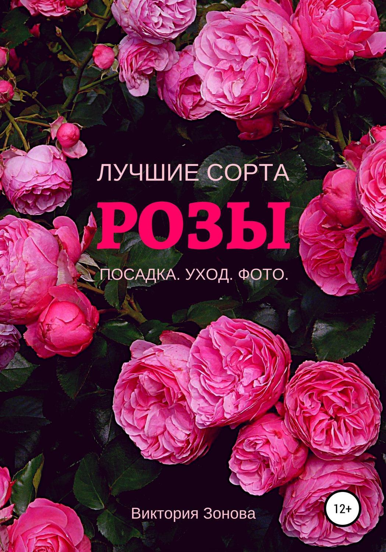 Розы. Лучшие сортаТекст