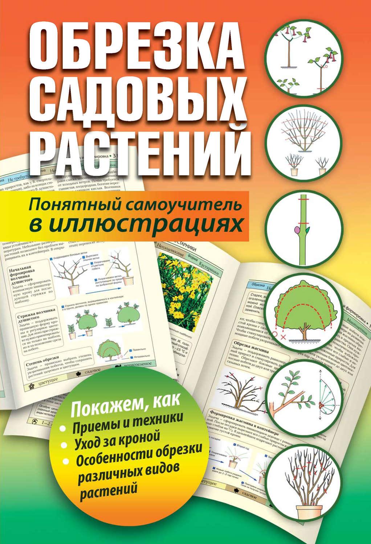 Обрезка садовых растений. Понятный самоучитель в иллюстрацияхPDF